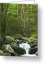 Rapids At Springtime Greeting Card by Andrew Soundarajan