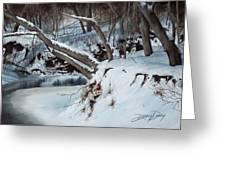 Rattlesnake Creek Greeting Card