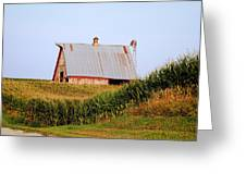 Red Barn Corn Field Greeting Card