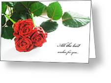 Red Fresh Roses On White Greeting Card