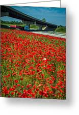 Red Poppy Field Near Highway Road Greeting Card