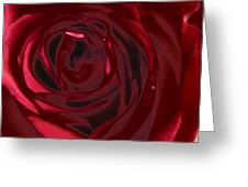Red Rose Abstract 2 Greeting Card