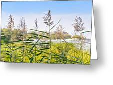 Reed Flowers Greeting Card