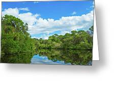 Reflection Of Trees And Clouds In South Greeting Card