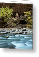 River Flowing Through Rocks, Zion Greeting Card
