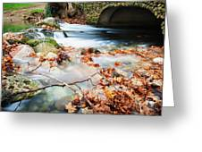 River Flowing Under Stone Bridge Greeting Card