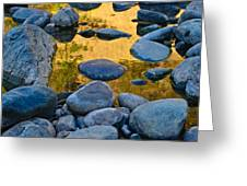 River Of Gold 2 Greeting Card