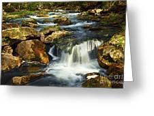 River Rapids Greeting Card by Elena Elisseeva