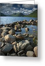 Rocky Shoreline In Acadia National Park Greeting Card