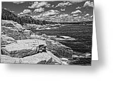 Rocky Summer Seascape Acadia National Park Photograph Greeting Card