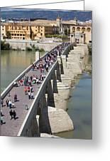 Roman Bridge In Cordoba Greeting Card
