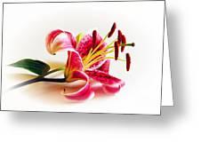 Romantic Feeling Greeting Card by Arnie Goldstein