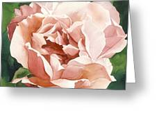 Rose In Pink Greeting Card