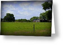 Rural Florida Greeting Card