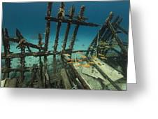 Safari Boat Wreckage And Aquatic Life In The Red Sea. Greeting Card