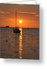 Sailor's Delight Greeting Card