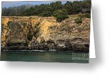 Salt Point Cliffs Greeting Card