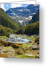Scenic Valley In New Zealand Greeting Card