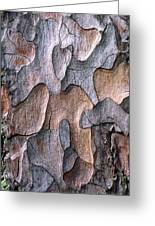 Scots Pine Bark Abstract Greeting Card