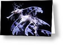 Sea Dragon Greeting Card by Paulette Thomas