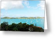 Sea Of Sailboats Greeting Card