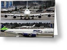 Seahawks 747 Greeting Card
