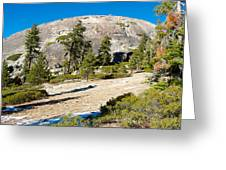 Sentinel Dome From Sentinel Dome Trail In Yosemite Np-ca  Greeting Card