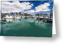 Seward Harbor Greeting Card