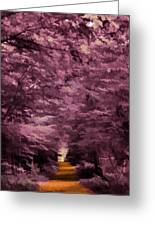 Shadow Path Greeting Card