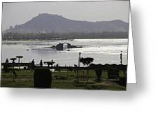 Shalimar Garden The Dal Lake And Mountains Greeting Card