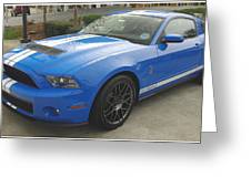 Shelby Cobra Gt 500 Greeting Card