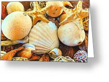 Shells Greeting Card by Denise Darby