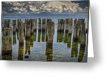 Shore Pilings At Fayette State Park Greeting Card