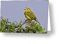 Singing Greeting Card