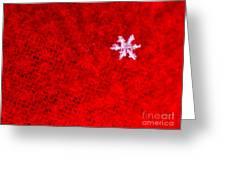 Singular Greeting Card