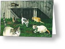 Six Cats Greeting Card
