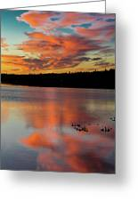 Skilak Lake, Alaska, The Aleutian Greeting Card