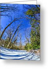 Snow Covered Road Leads Through The Wooded Forest Greeting Card