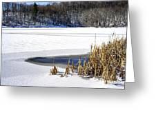 Snow On Lake Greeting Card