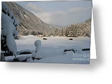 Snowed Under Greeting Card