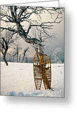 Snowshoes Leaning Against Birch Tree Snowscape Greeting Card