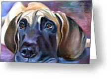 Soulful - Great Dane Greeting Card by Lyn Cook
