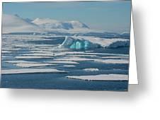 South Of The Antarctic Circle Greeting Card