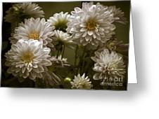 Spring Flowers Greeting Card by Joe McCormack Jr