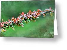 Spring Raindrops On Leaves - Digital Paint Greeting Card