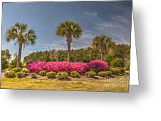 Spring Time In Charleston Greeting Card