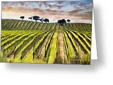 Spring Vineyard Greeting Card