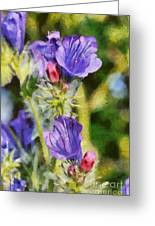 Spring Wild Flower Greeting Card