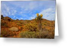 Springtime In Arizona Greeting Card