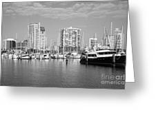 St Petersburg Yacht Basin Greeting Card